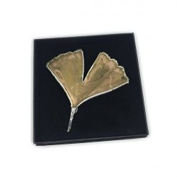 BROCHE GINGKO PLATA NATURAL ARBORETUM 9x9